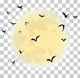 Halloween Moon PNG Images, Halloween Moon Clipart Free Download.