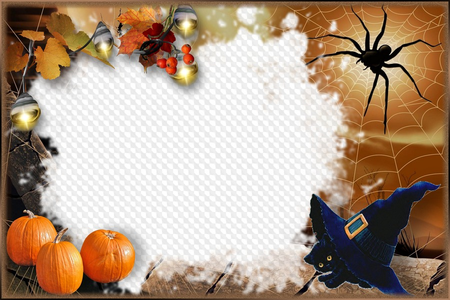 Halloween Frame for Photoshop with a black kitten.