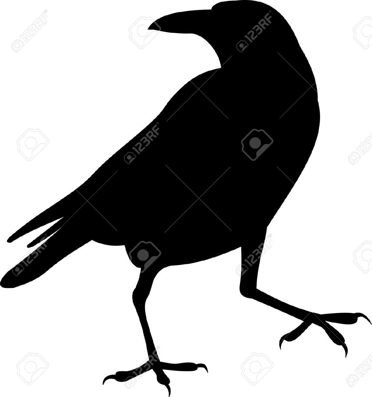 Showing post & media for Cartoon halloween raven.