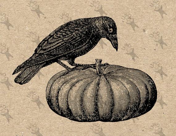 Halloween raven pumpkin clipart.