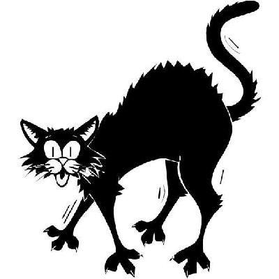 New Custom Screen Printed Tshirt Halloween Cat Scary Costume.