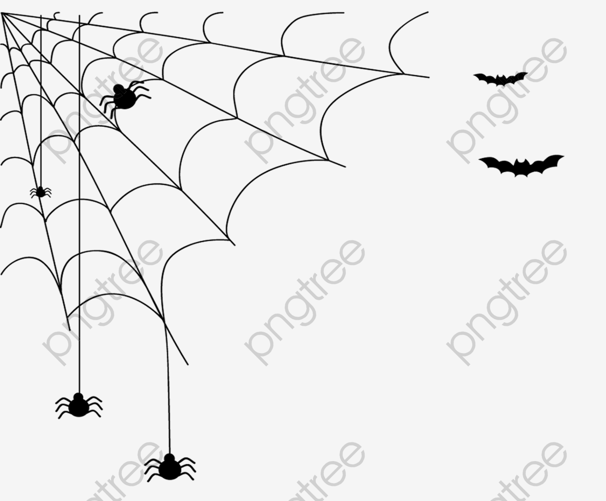 Transparent halloween spider PNG Format Image With Size 3576*2918.