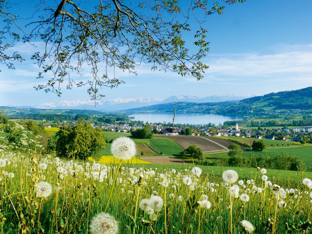 1000+ images about Schweizer Landschaften.