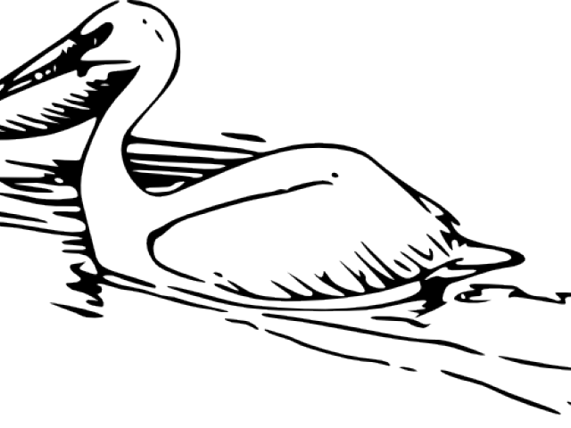 Pelican clipart simple, Pelican simple Transparent FREE for.