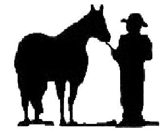 Halter Horse Clipart.
