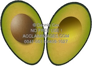 Clipart Stock Illustration: Halved Avocado.