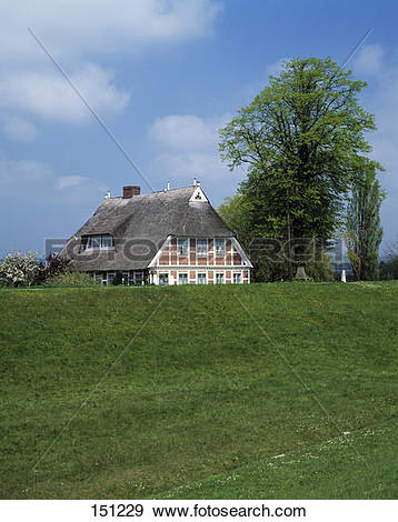 Stock Photograph of Traditional house in field, Elbe River.