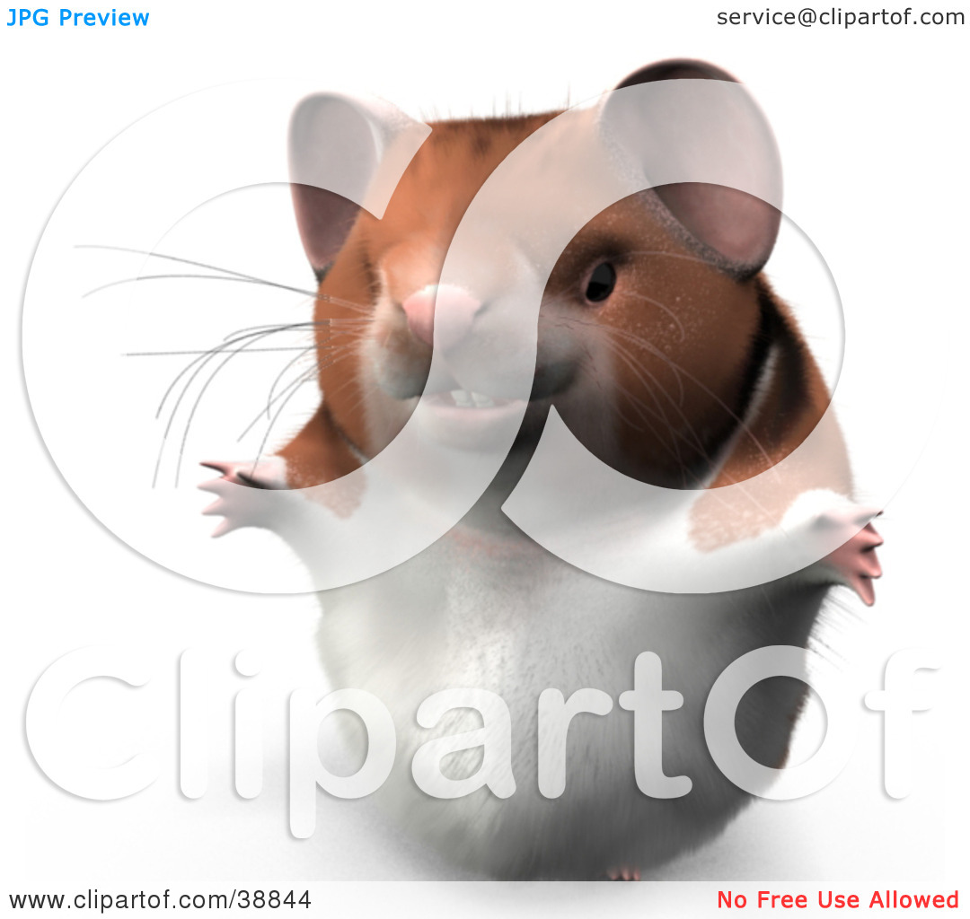 Clipart Illustration of Hammy The Productive Hamster Holding His.