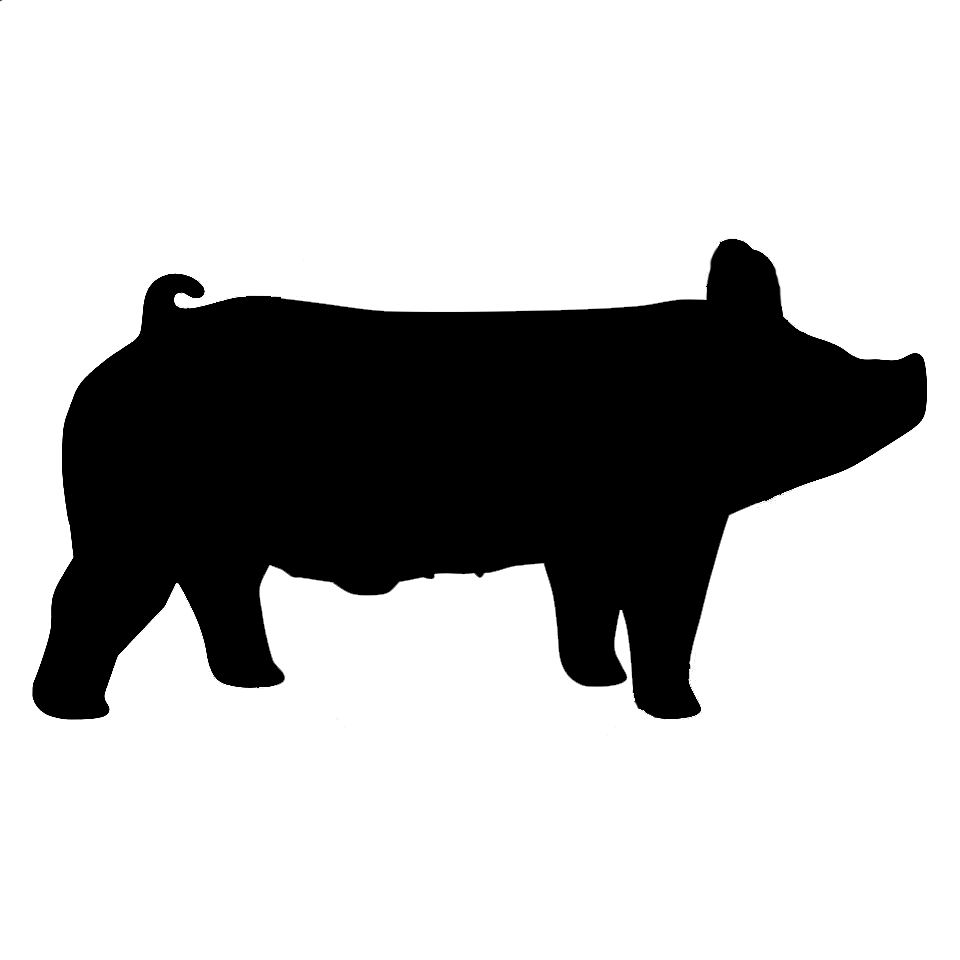 Hampshire Show Pig Silhouette.
