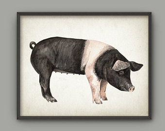 Hampshire Pig Silhouette.