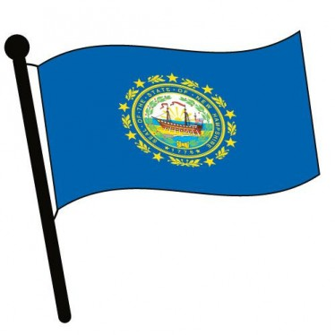 Waving State Flags L.