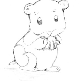 Free Hamster Black And White Clipart, Download Free Clip Art.