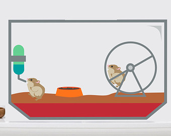 Free Cute Hamsters Cliparts, Download Free Clip Art, Free Clip Art.