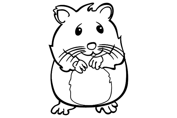 Hamster clipart black and white 4 » Clipart Station.
