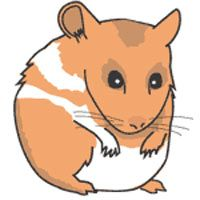 7 Hamsters Clipart.