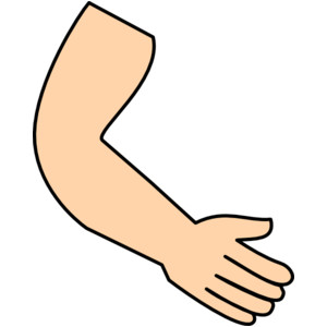 Arm And Hand Clipart.