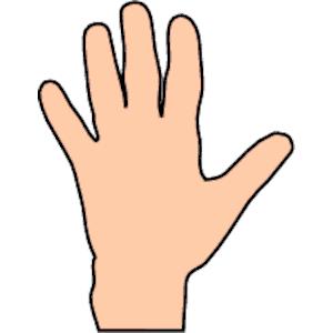 Hand Clipart.