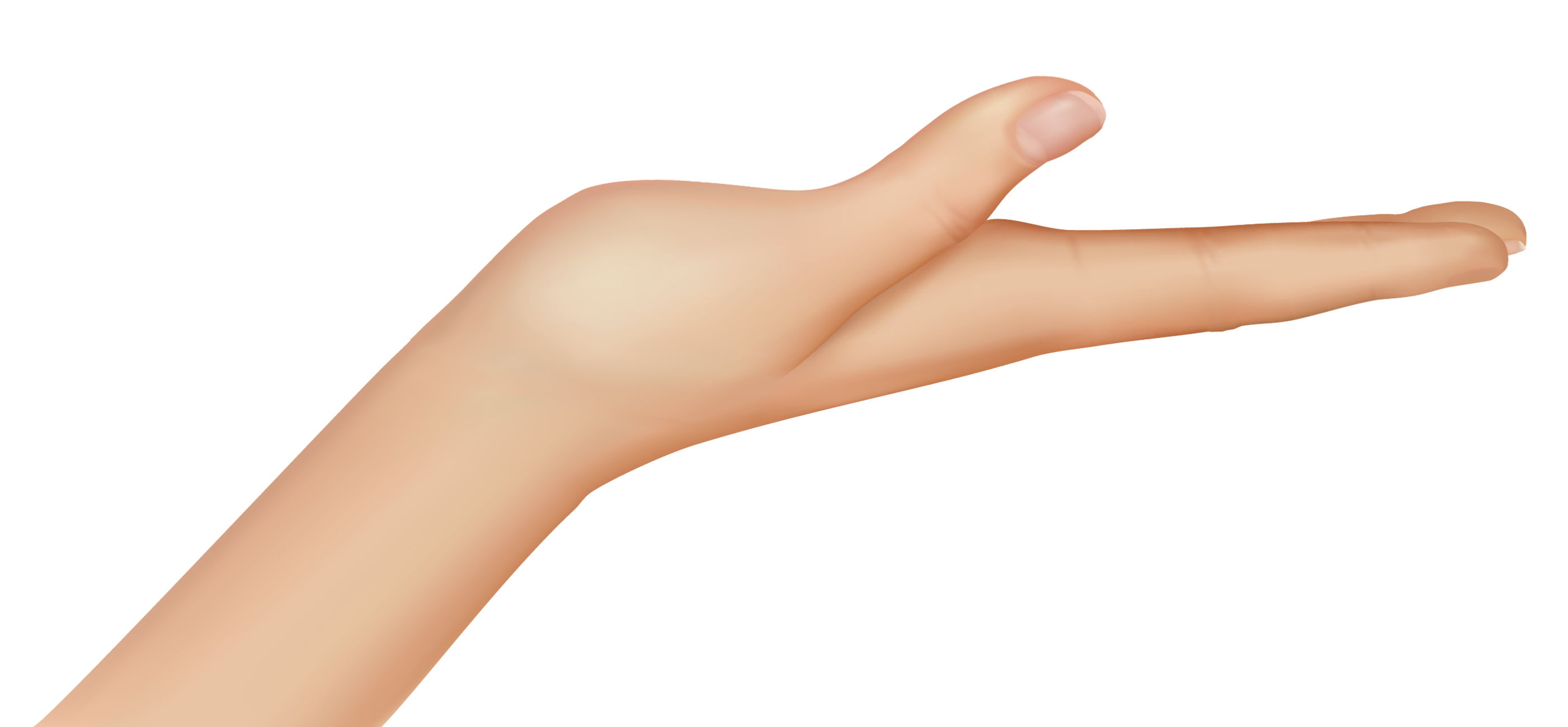 Woman hand clipart png #44754.