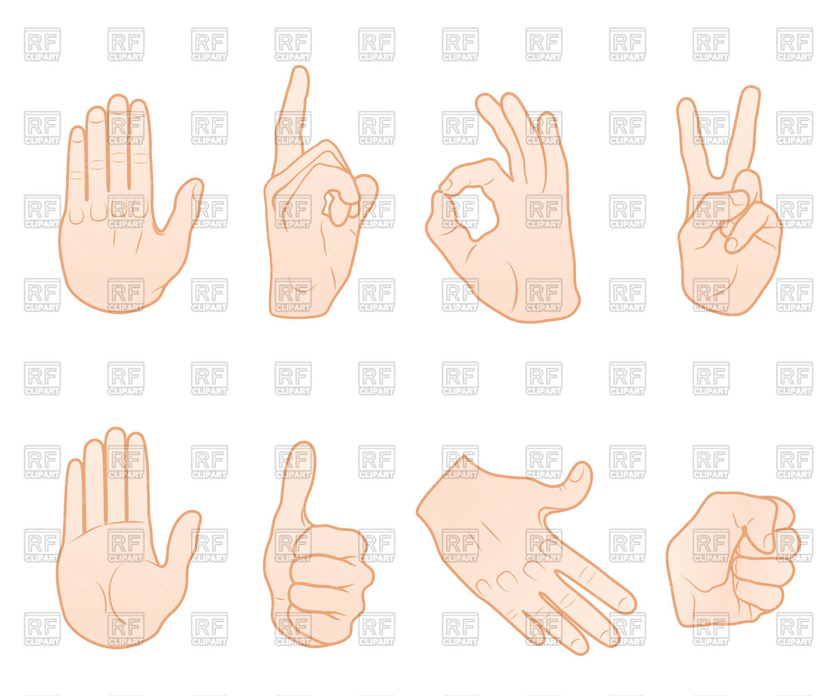 Common hand gestures Stock Vector Image.