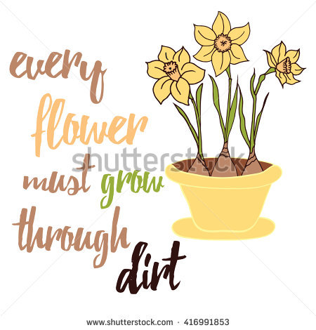 Spring Flowers Daffodils Grows On The Flower Pot. Typographic.