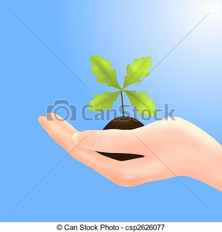 Stock Illustrations of Oak Sapling in Hand with Blue Sky.