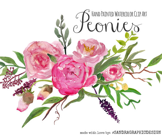 "Floral Clip Art: ""PEONY Clip Art"" Hand Painted Watercolor Clip Art."