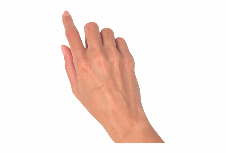 Hand Png.