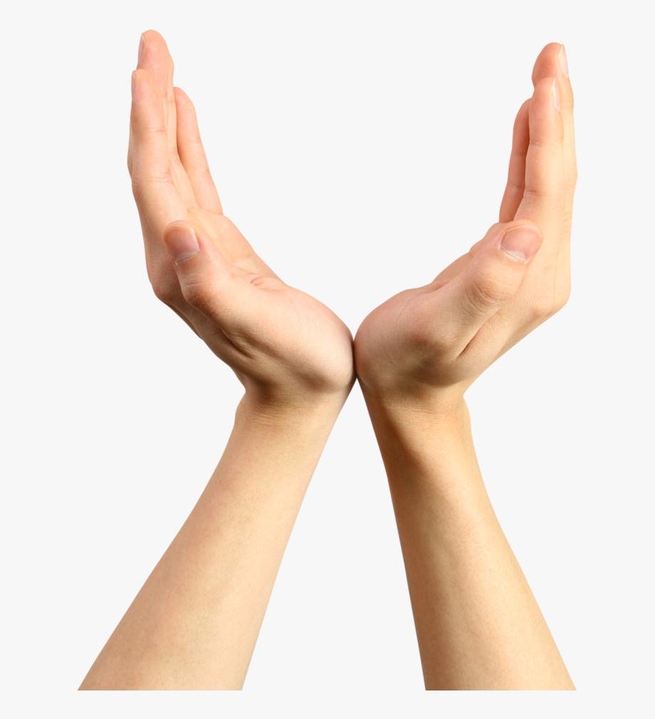Hands Png, Hand.