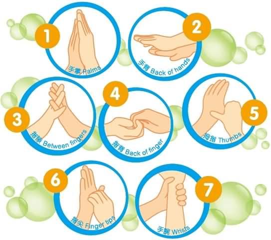 Hand Hygiene Clipart.