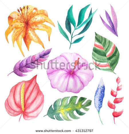 Hand Painted Clip Art Stock Photos, Royalty.
