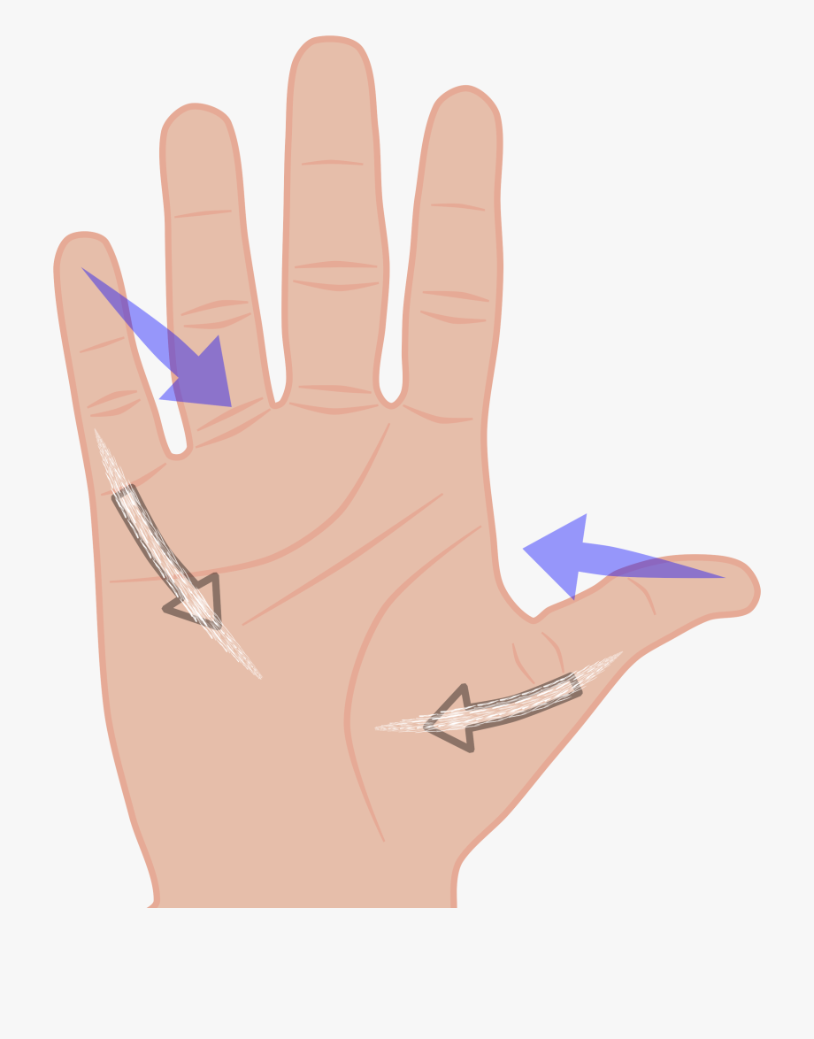 Fingers Clipart.