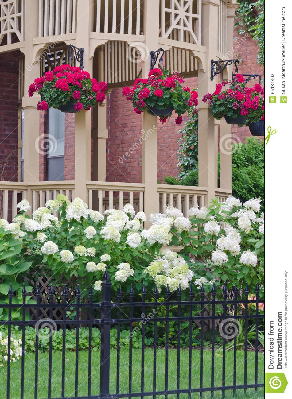 Geranium Plants Hanging From Gazebo Porch With Hydrangea Bushes.