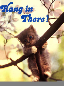 Hang In There Kitty Clipart.