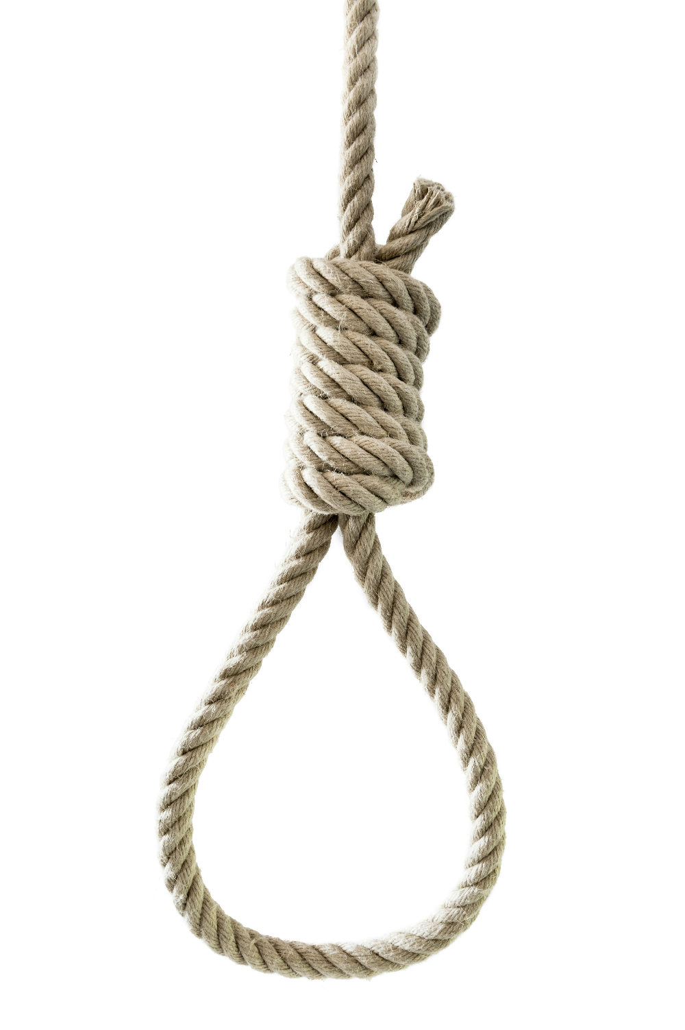 Tree With Hanging Rope Png & Free Tree With Hanging Rope.png.
