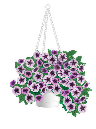 174 Hanging Basket Stock Vector Illustration And Royalty Free.