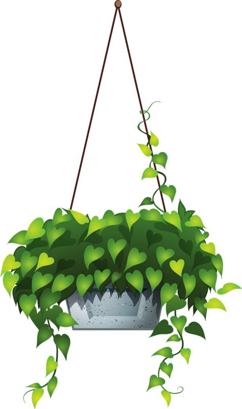 hanging flower 6.png.