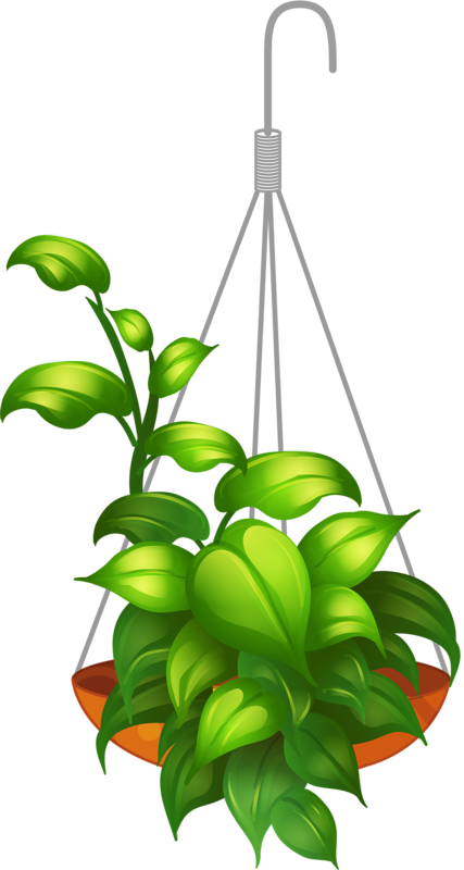 hanging flower 2.png.
