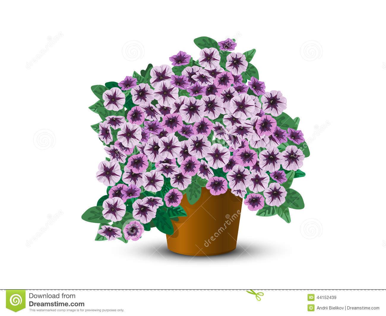 Hanging Flower Basket Stock Illustrations.