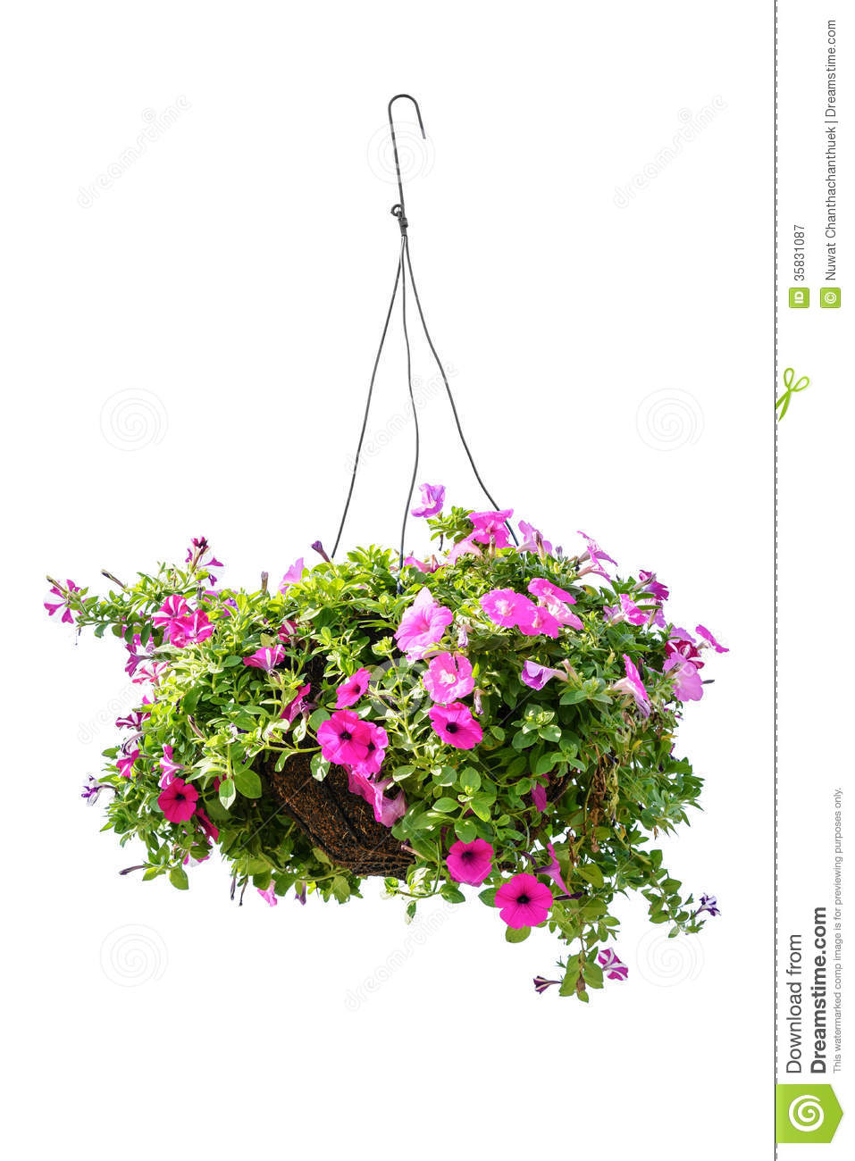 Clipart hanging flower basket.