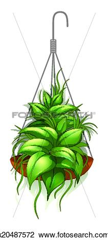 Clipart of A hanging pot with a green plant k20487572.