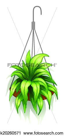 Clipart of A hanging pot with green plants k20260571.