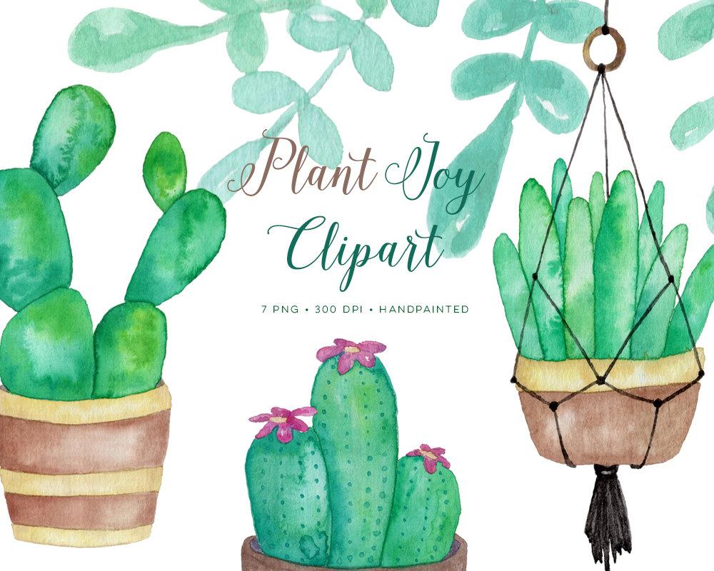 Watercolor Clipart Plants Succulents, planters, cactus. Hand.