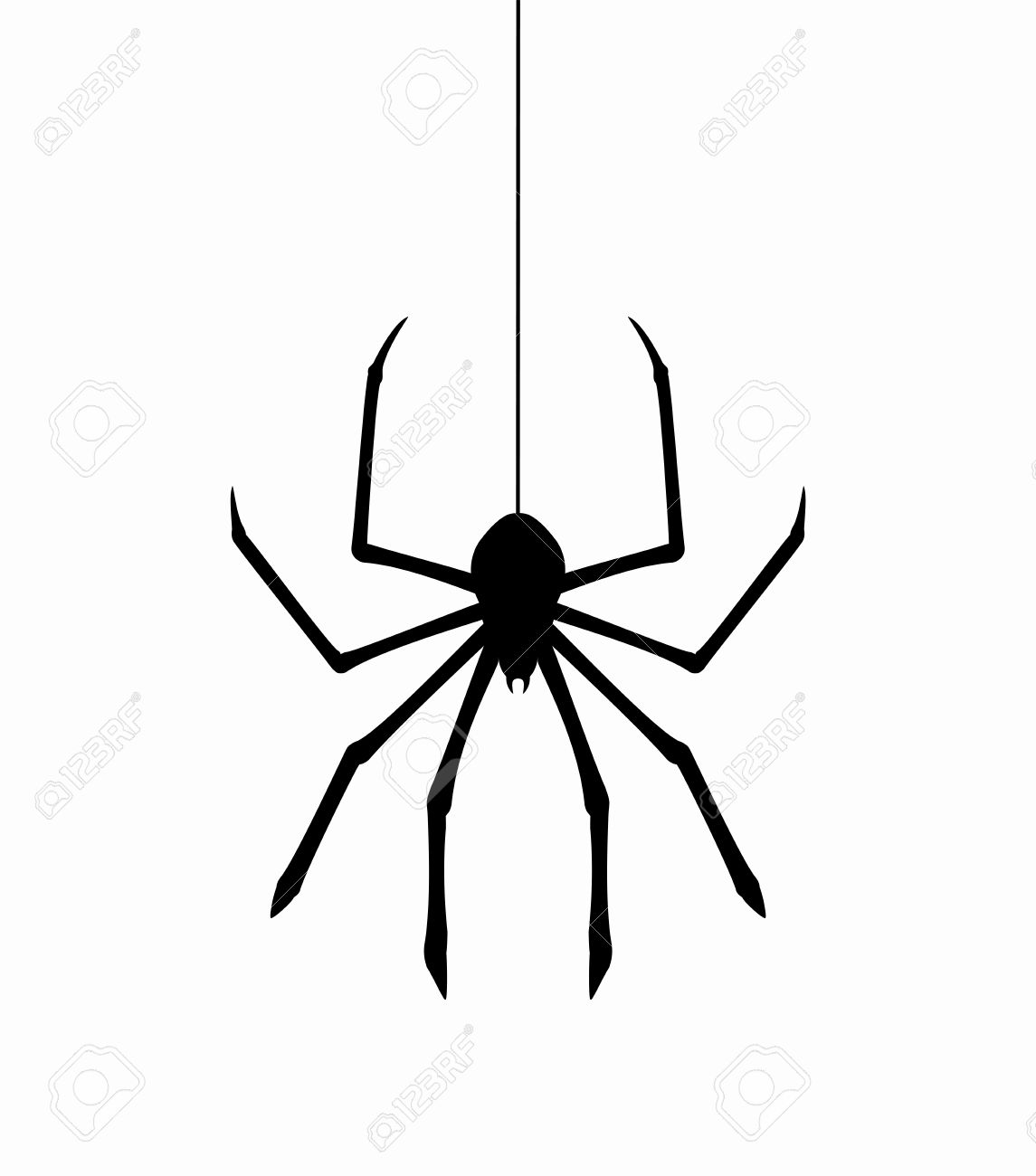 vector hanging spider on web thread.