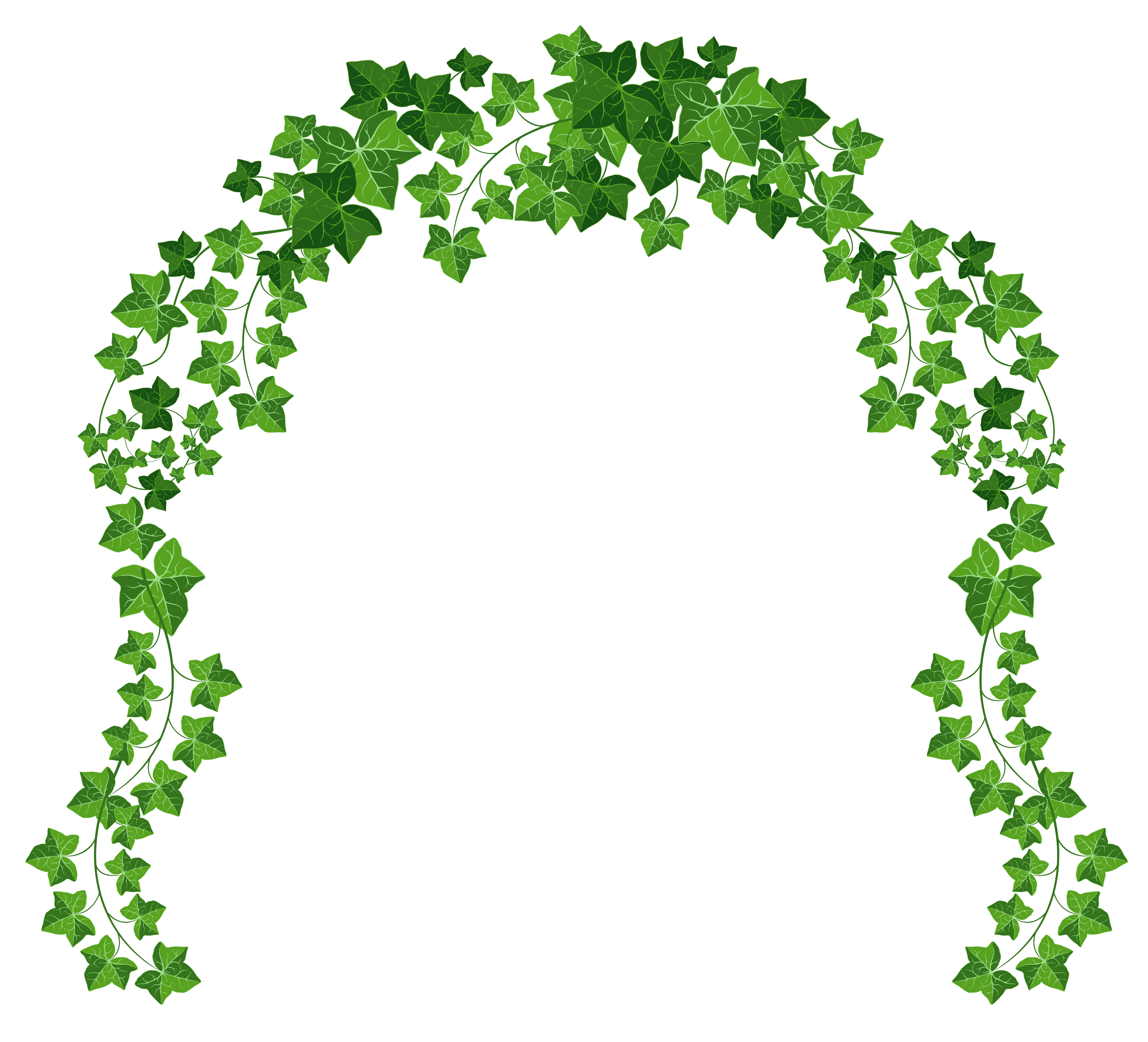 Free Hanging Vines Png, Download Free Clip Art, Free Clip.
