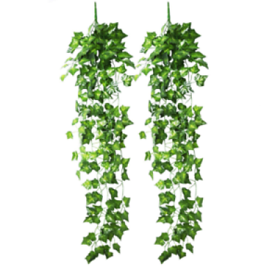 Hanging vines png AbeonCliparts.