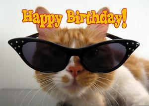 Happy Birthday Cat.