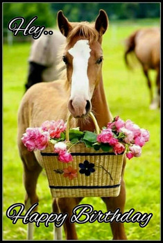 Happy birthday horse clip art.