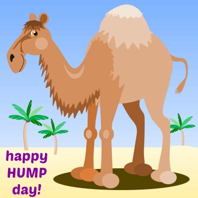 Happy Hump Day Clipart 3 Station Creative Clip Art Trending 15.