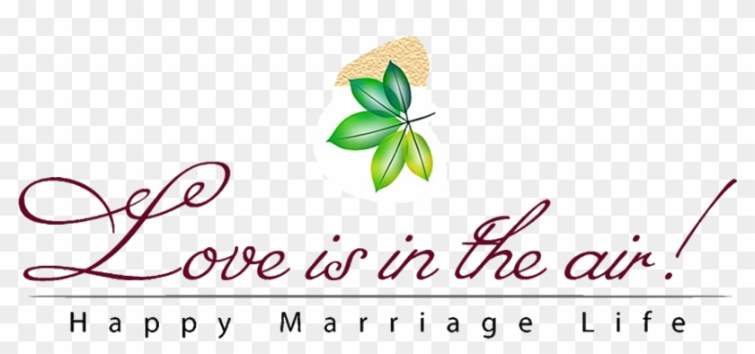Png Text For Wedding Album.