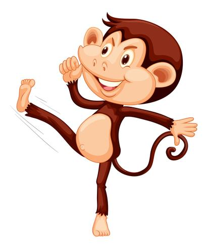 A happy monkey on white backgroung.